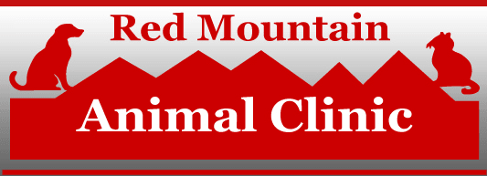 red-mountain-animal-clinic
